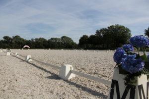 craeft-advies-hippische-sector-paardenbak